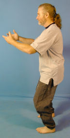 A Qigong Exercise for all Reasons
